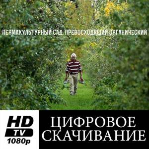 Digital-Download_ru